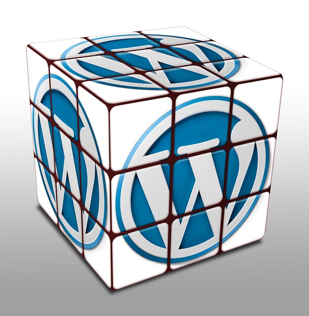 Wordpress Cube